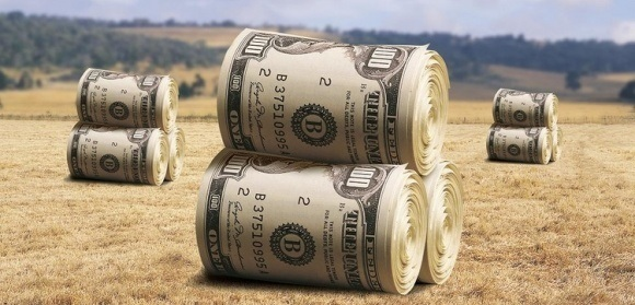 dollar bill bales