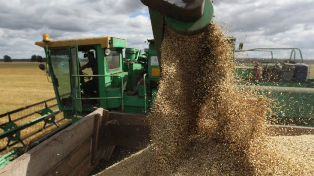 Russian Wheat Prices keep Continue to Rise !!!