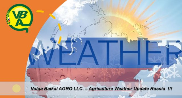 Volga Baikal AGRO NEWS Update on the Weather Conditions in Russia !!!