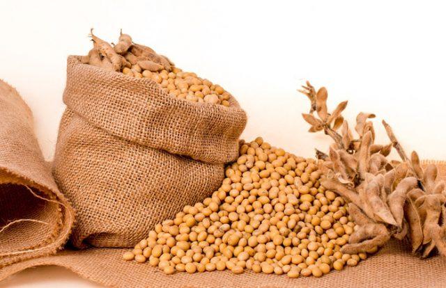 Volga Baikal AGRO NEWS Update on the World Market of Soybeans !!!