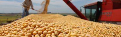 Volga Baikal AGRO NEWS Update on the Situation on the Soybean Exports !!!