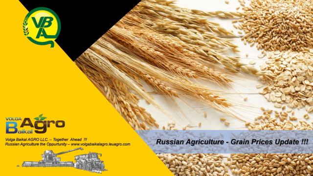 Volga Baikal AGRO NEWS Update on the Russian Grain Price Development !!!