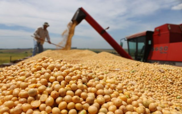 Volga Baikal AGRO NEWS Update on Soybean Export !!!