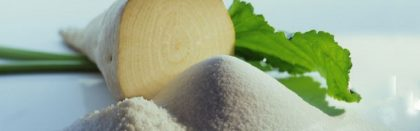 Volga Baikal AGRO NEWS Update on the Situation with Sugar Beet in Russia !!!