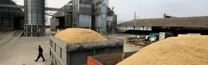 Volga Baikal AGRO NEWS Update on the Grain Interventions Prices !!!