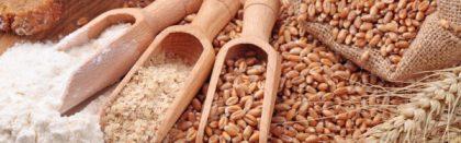Volga Baikal AGRO NEWS Update on the World Grain Price Forecast !!!