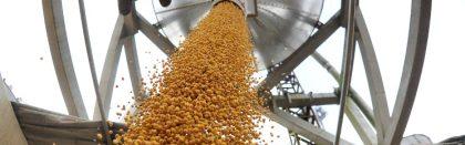 Volga Baikal AGRO NEWS Update on Soybean Exports Duty !!!