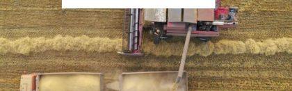 """Leu-AGRO News Update on Russian Agriculture, Martin Leu gave an interview to the German Newspaper """"Wirtschafts Woche""""."""